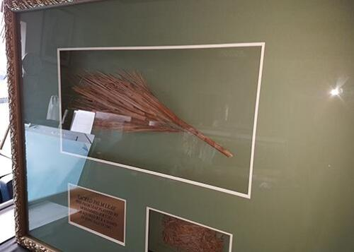 Framed palm leaf from Mecca